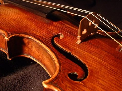 """Violin -- closeup"" by pellaea is licensed under CC BY 2.0"