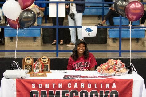 Morgan Carter, Volleyball, University of South Carolina