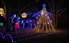 Navigation to Story: Holiday Lights Bring Joy to the Holiday Season